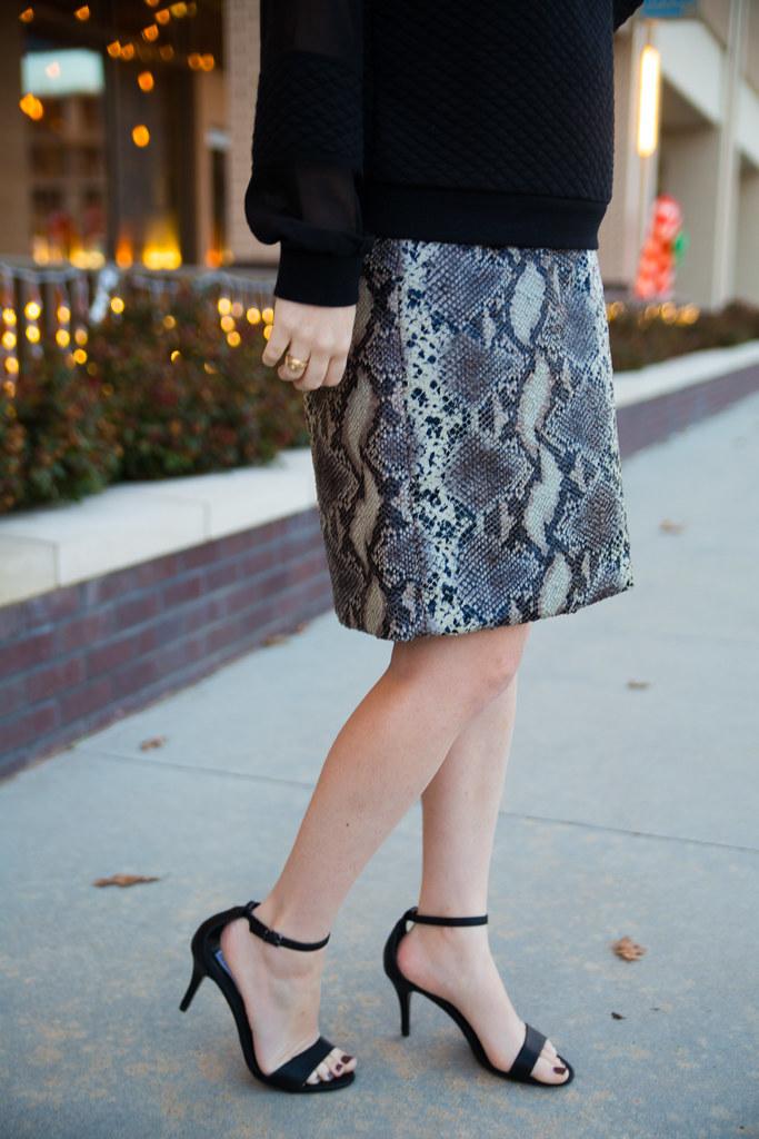Snakeskin Skirt-2.jpg