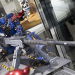 GBWC2014_World_representative_exhibitions-57