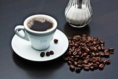看油質、泡沫和保存,行家領路,喝進每一口都是好咖啡