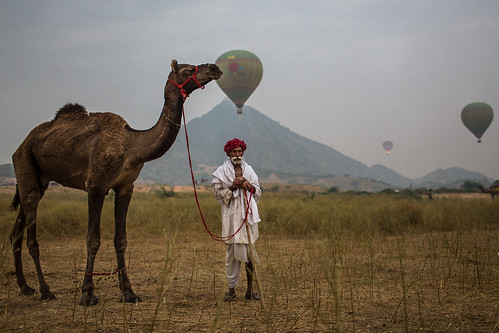 marwari Camel Trader and the ballooning in the Pushkar Camel Fair