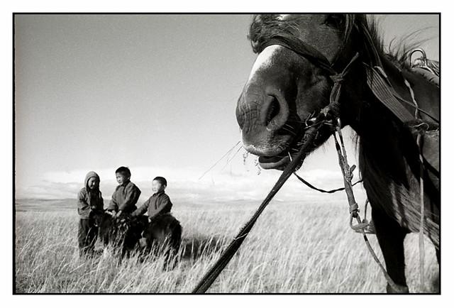 Mongolia 2014, neopan 400