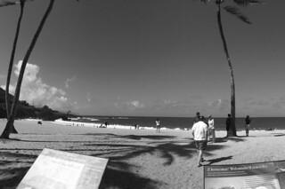 Waimea Bay - Beach