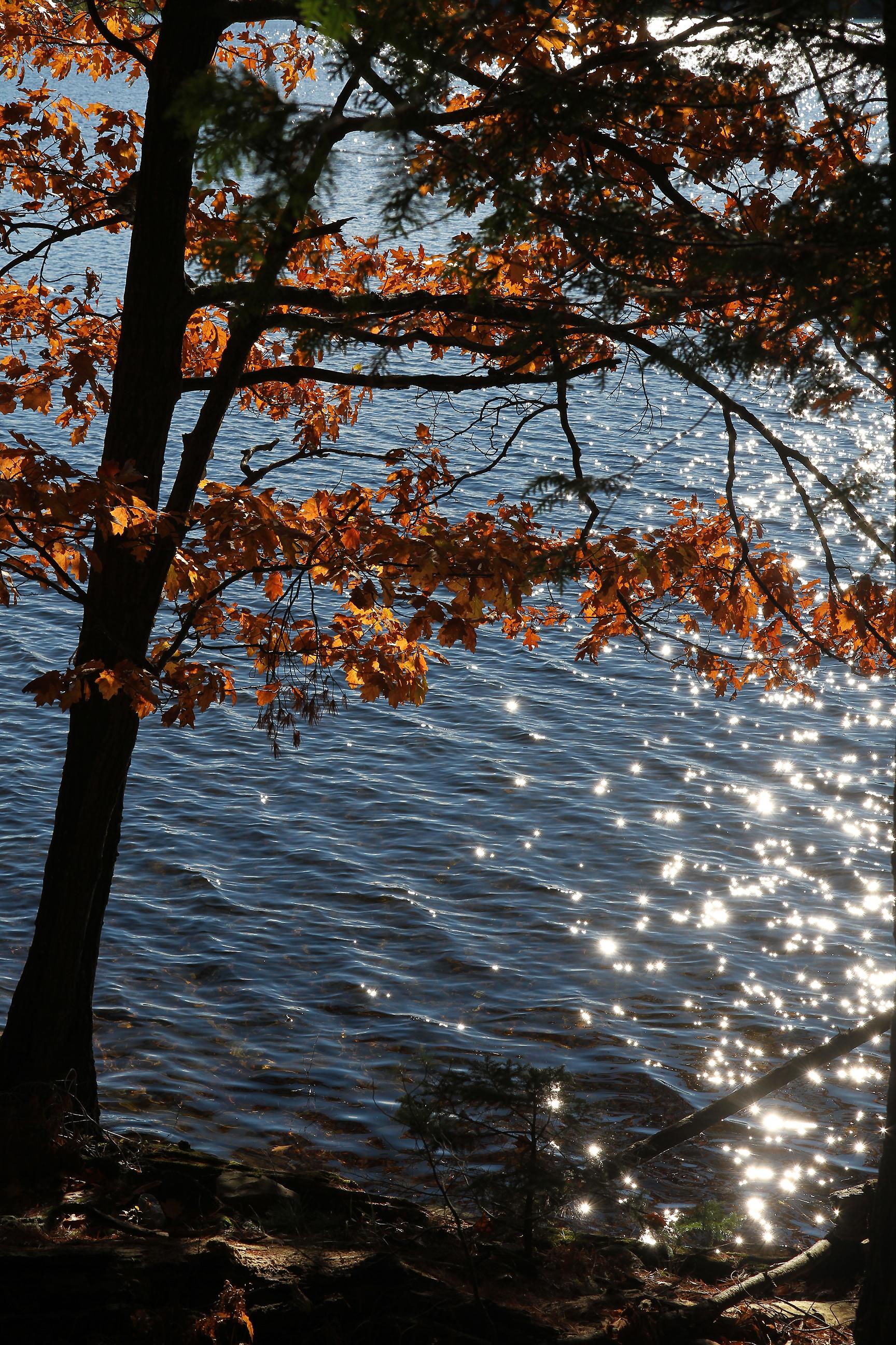 Silent lake 13