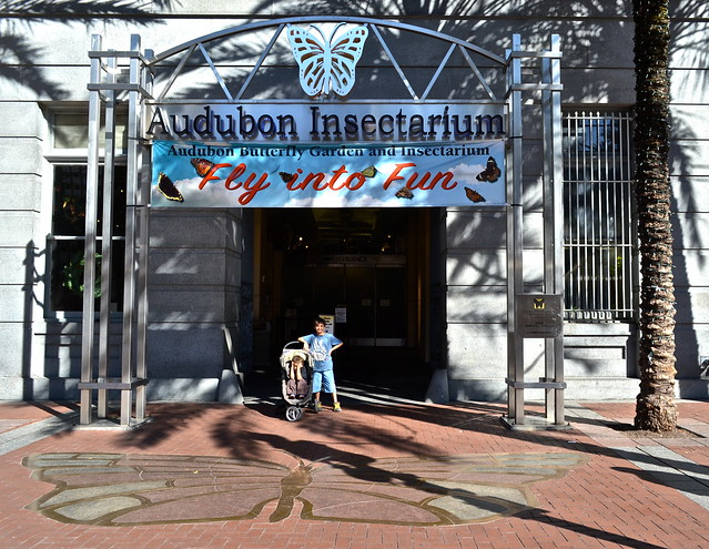 Audubon Butterfly Garden and Insectarium