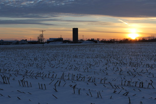 Farms at Sunset in Saline, Michigan - Saturday January 10, 2015