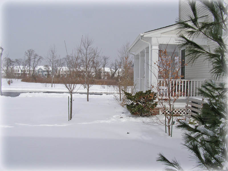 ~ snow gauge...