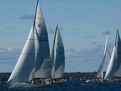 yacht racing, sail, sailboat, sailing, sailboat racing, keelboat, vehicle, sailing, sports, windsports, mast, wind, watercraft, scow, boat,