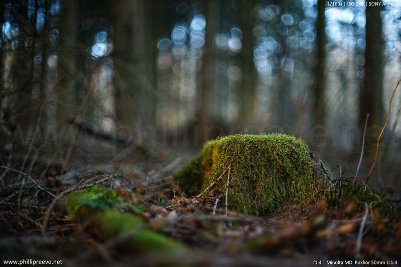 Minolta MD 50mm 1:1.4 @f/1.4