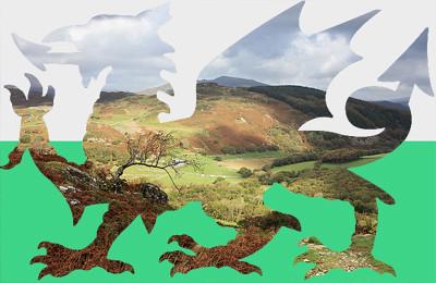 Dragons of the Valley / Dreigiau'r Cwm