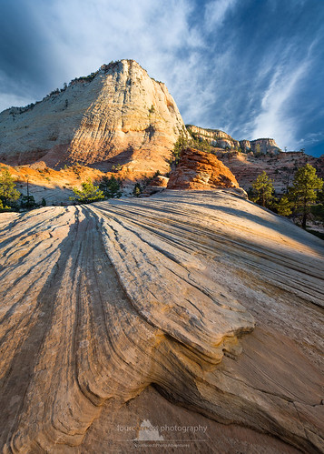 checkerboardmesa zionnationalpark utah peterboehringer leadinglines yellow fourcornersphotography