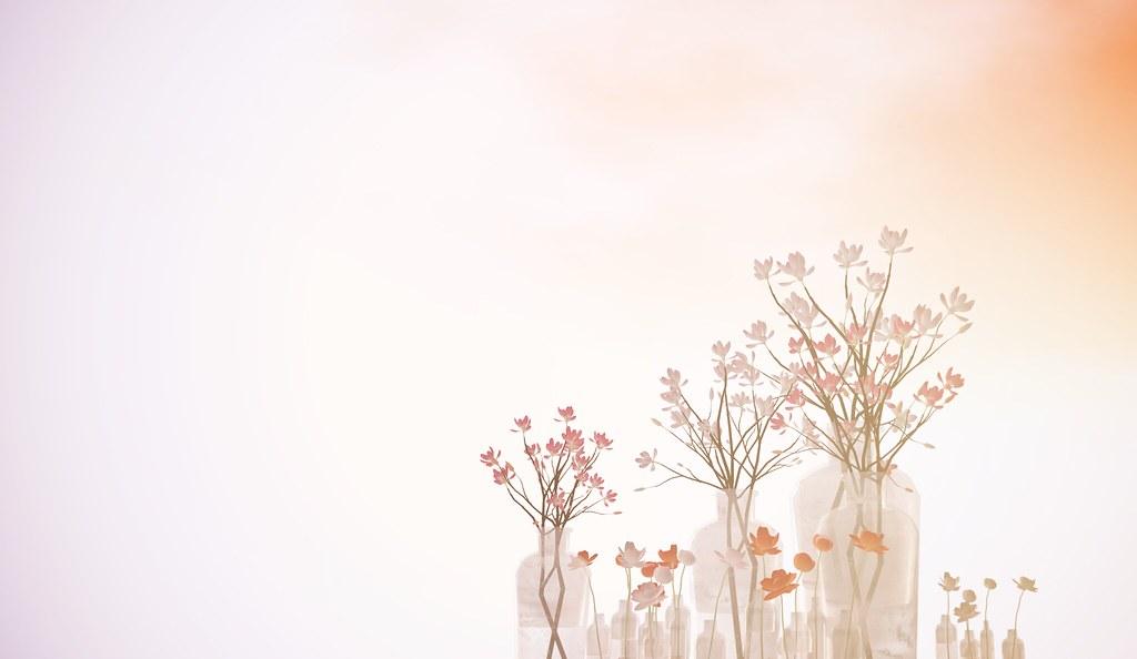 [ keke ] peonies & magnolias @ Shiny Shabby