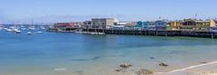 By Monterey Pier 2