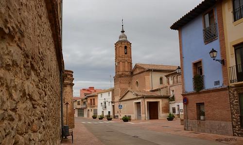 Cortes. Navarra.