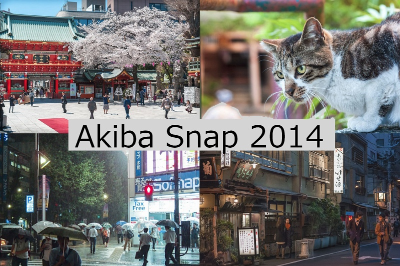 Akiba Snap 2014 sample