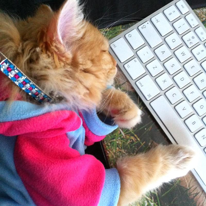 I fall asleep easier when I am at work