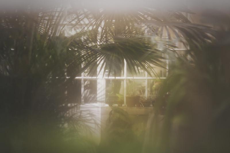 Invernadero de Sintra