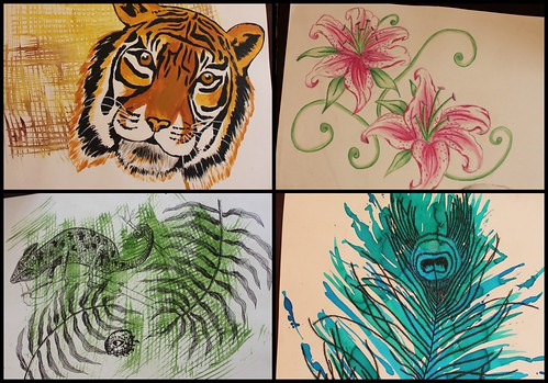 Drawings from Animal Project