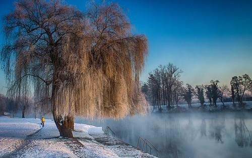 park city winter urban mist snow tree fog canon river landscape town walk croatia willow hdr cro hrvatska karlovac korana foginovo