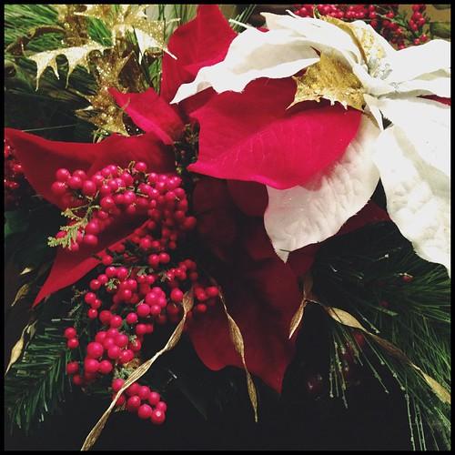 December 11 - Something red