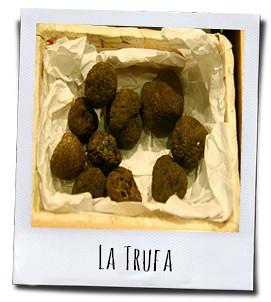 Spanje is een van de grootste truffelproducenten ter wereld