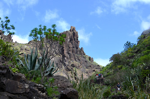 Guided walking group, Masca Barranco, Buenavista del Norte, Tenerife