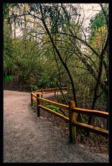 Sandy Trail Fence