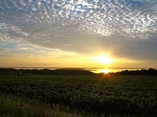 Traverse City Summer Sunset