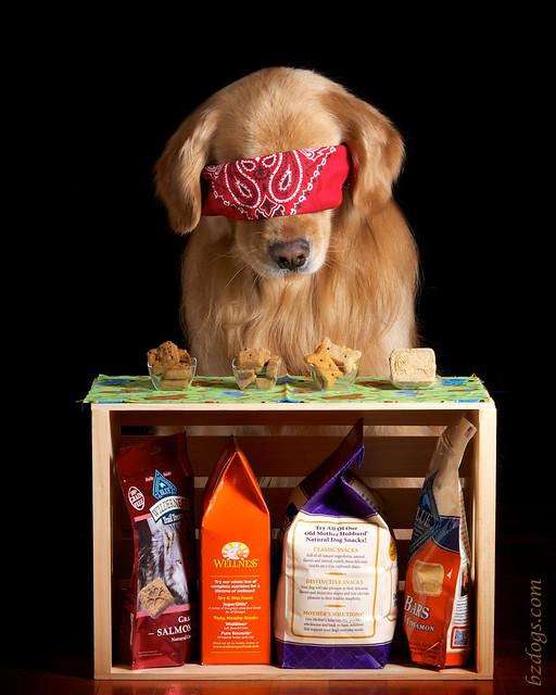 Blind Sniff Test