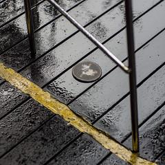 Tropical rain, beer coaster