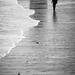 Caminó... by Jaime GF