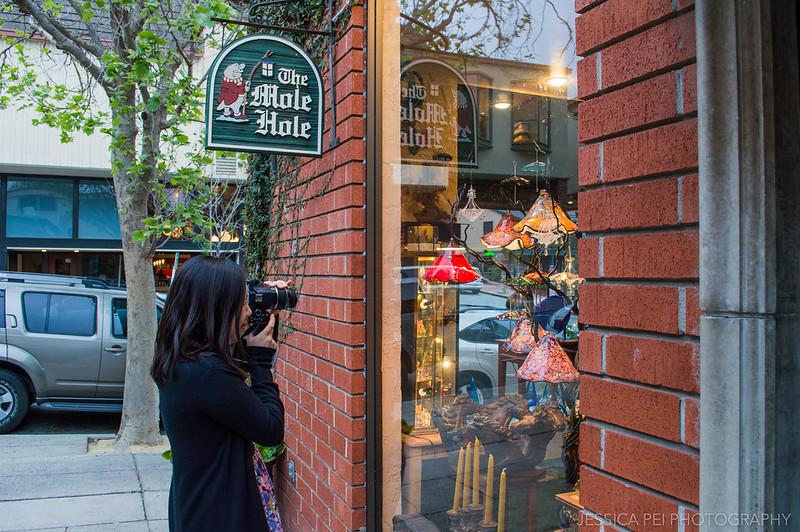 The Mole Hole Shop Carmel California