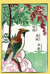 Heavenly bamboo, kobus magnolia and Japanese waxwing