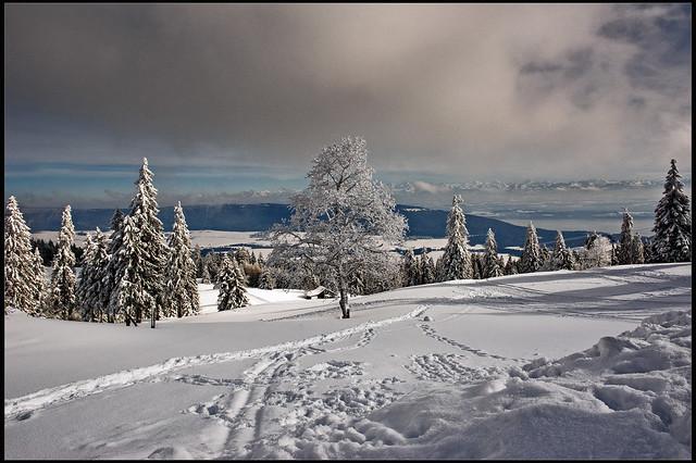 Winter paradise , white and cold. Switzerland, Jura mountains. La Vue-des-Alpes February 10, 2013. 2013:02:10 15:33:40.