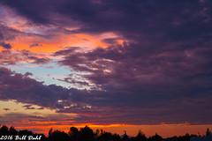 Sunset 1082