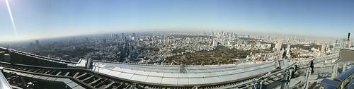 富士山見えたよ