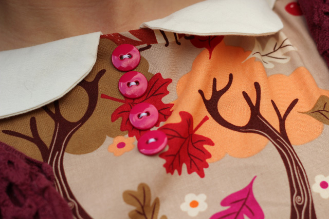 Peter Pan Collar and Autumn Leaf Dress