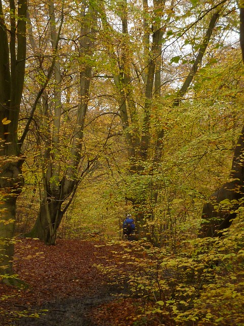 Beeches Epping 9
