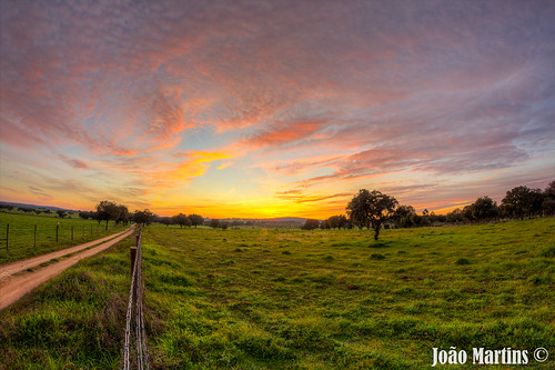 sunset verde portugal natureza alentejo portalegre