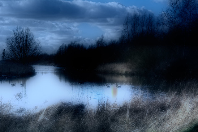 Agrusoft Webdesign Photopage - At Moonlit Pond