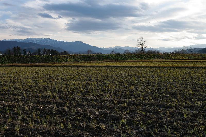 初冬の田園風景_2014