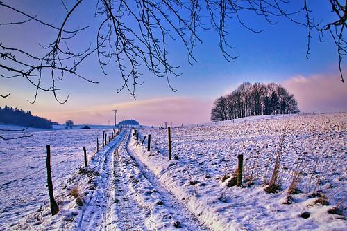 path we walk...