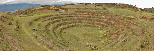 Moray Agriculture Panorama
