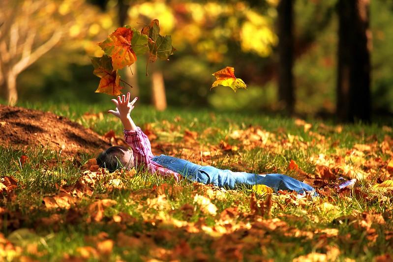 AS3A2829 Autumn Fun