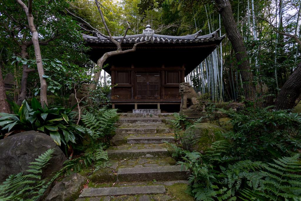 Bamboo grove by Yakushido - Nezu museum - Tokyo