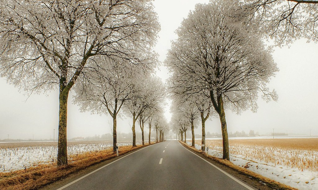 Bavarian country road