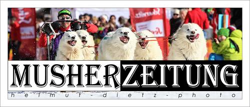 WSA Weltmeisterschaften im Schlittenhunderennen 2015, Scharnitz, Österreich: Weltmeister 6-Dog-2 Ueli Gerber, CH