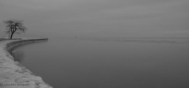 steve bond Photog - North ave beach DSC_3790