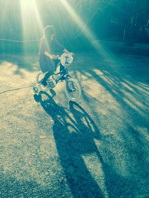 sunlight and a new bike...