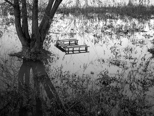 river bench landscape blackwhite marica plovdiv overflowed