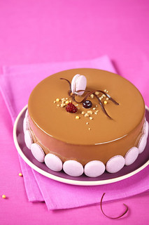 Apple, Blueberry and Milk Chocolate Entremet